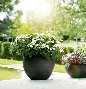ESTERAS XXL planters – incredibly versatile
